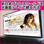 速報よりも早い!新日本プロレスワールドをテレビの大画面で見る方法