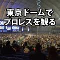 東京ドームの座席・席順・アクセスを解説。初めてのプロレス観戦!