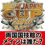 ニュージャパン・カップの結果を準決勝から予想する!両国のメインは…