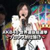 AKB48世界選抜総選挙~プロレス的仕掛け~